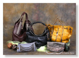 A recent purse product shoot for a client