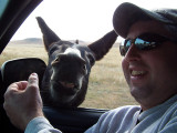 Greg Rowell's Hunti'n Trip