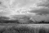 Summer Storm 2009