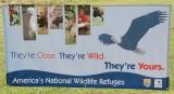Wheeler Wildlife Refuge - 09/18/2008