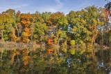 North Alabama Fall - 2010