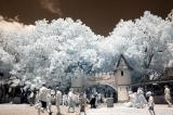 Infrared View of Scarborough Faire
