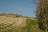 Early autumn field