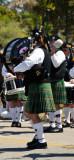 Celebrating St. Patrick in America