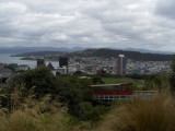 Wellington. View from the Botanic Gardens