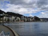 Wellington. Oriental Bay