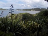 Paihia viewed from Waitangi