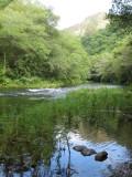 Rio Eume. P.N. de las Fragas del Eume
