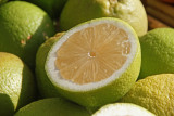 Seedless lemon
