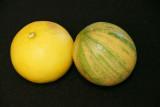 Lemon varieties