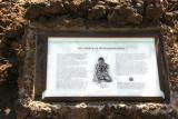 Waikoloa petroglyph