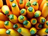 Yellow Zucchini top view