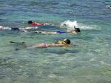 Snorkeling at Hanauma