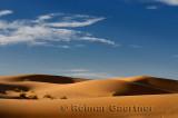 Evening light on Erg Chebbi desert sand dunes Morocco
