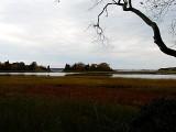 Salt Marsh and Beyond ~ October 25th