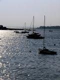 Fall Boats ~ September 11th