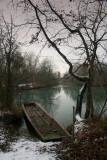 The Rhine forest  -   Alsace: la forêt du Rhin