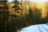the last snow.