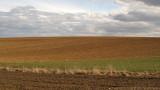 fields # 4