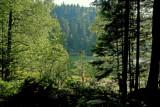 le lac de la Maix # 2