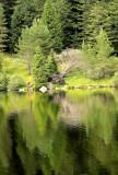 the trouts lake