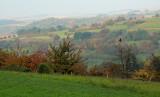 autumn in Alsace