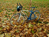 ma bicyclette bleue