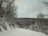 scene hivernale