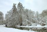 le canal de la Bruche, en hiver.