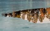le lac gelé