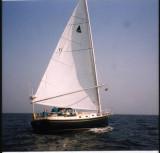TESSA  30C  11  1979
