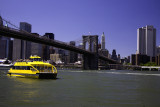 Brooklyn Bridge 2008