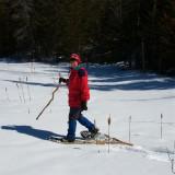 Backyard Snowshoe