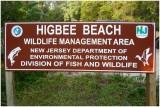 Higbee Beach-NJ