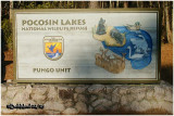 Pocosin Lakes NWR-NC