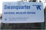 Swanquarter NWR-NC