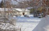 snow-jan08-01.jpg