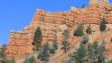 DSC116 red canyon.JPG