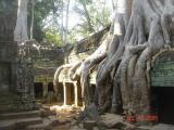 cambodia angkor temples014.JPG