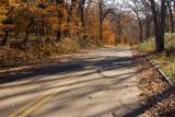 Fall Road  ~  October 24