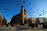 Krakow ( PL )