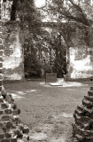 Sheldon Church Ruins 8