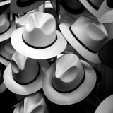 Hat Shop #3