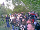 Melodious Warbler - twitchers