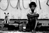 Murder and Mayhem in Paradise.Timor Leste.