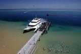 Tangalooma Wild Dolphin Resort - Moreton Island-Queensland. Australia