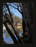 Murray River - Echuca