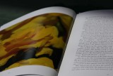 Open page of book - 3.jpg
