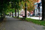 Promenade d'automne / Autumn walk
