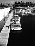 Canon Elan ll Black & White